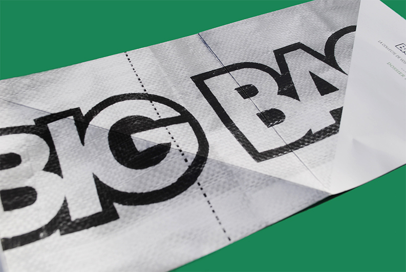 Bigbagngo-annegautier